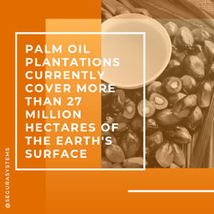 palm oil deforestation fact