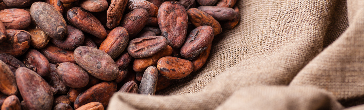 Easter: The Sourcing Problems in the Cocoa Industry
